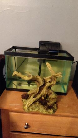 5 gallon fish tank with filter for Sale in Indianapolis,  IN