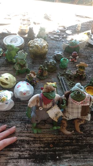 Frogs for Sale in Seneca, SC