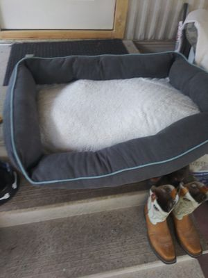 Dog bed for Sale in San Benito, TX