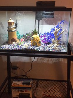 10 Gallon Fish Tank With Stand for Sale in Surprise,  AZ