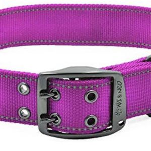 Max and Neo MAX Reflective Metal Buckle Dog Collar - We Donate a Collar to a Dog Rescue for Every Collar Sold for Sale in Phoenix, AZ