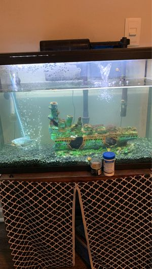 29 gallon fish tank with fish for Sale in Lawrenceville, GA