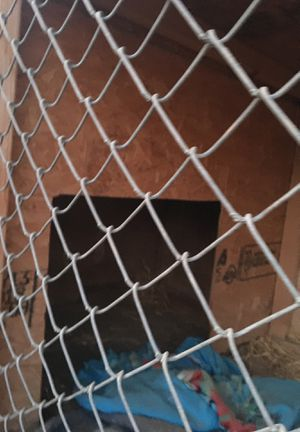 Dog kennel for Sale in Bakersfield, CA