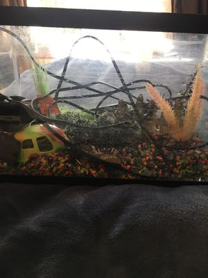 5 1/2 gallon fish tank and everything shown for Sale in Lake Stevens, WA