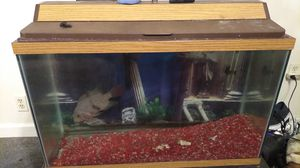29 gallon fish tank with stand an fish for Sale in Rouse, KY