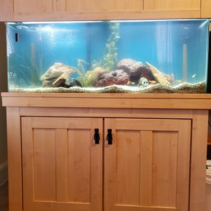 55 Gal Tank for Sale in Silver Spring, MD