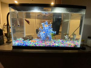 FREE - FISH TANK INCLUDING ACCESSORIES AND FOOD for Sale in Sanford, FL