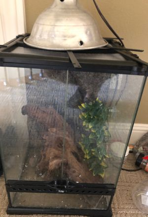 Created gecko (with tank) for Sale in Washougal, WA