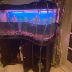 Fish Tank With Equipments for Sale in El Monte, CA