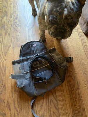 (New) Small Dog Backpack and Dog Collar for Sale in South San Francisco, CA