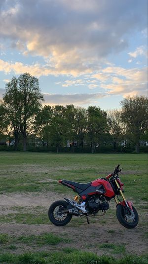 HONDA GROM 2015 for Sale in Queens, NY