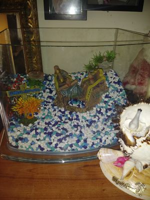 Small fish tank for Sale in Grandview Heights, OH