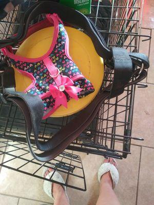 Dog items for Sale in Phoenix, AZ