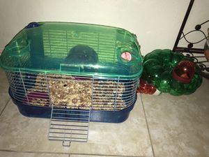 Mouse and cage for Sale in San Antonio, TX