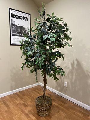 Silk Artificial Tree/Plant - 6ft for Sale in Spokane, WA