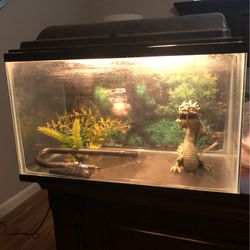 10 Gallon Fish Tank for Sale in Phoenix,  AZ