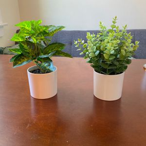 FREE - Fake Decor Plants (small-med) for Sale in San Francisco, CA