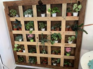 Plant wall (not including plants) for Sale in Laguna Beach, CA