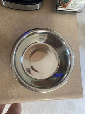 Dog Bowl for Sale in New Britain, CT