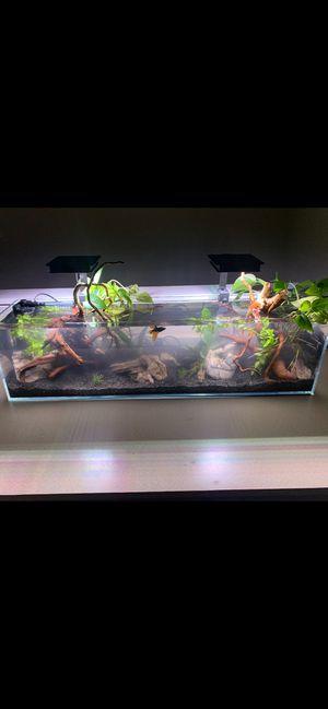Aquatop Tank - 12gal for Sale in Issaquah, WA