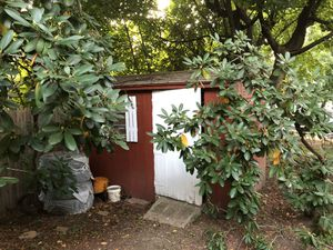 Storage Shed for Lease for Sale in Chestnut Hill, MA