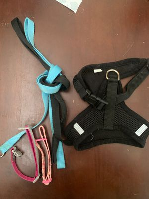 Cat harness,2 leashes, and 2 collars for Sale in Orlando, FL