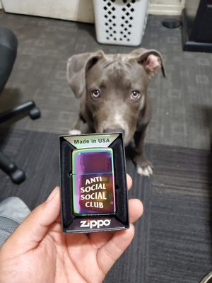 Anti Social Social Club x Zippo lighter for Sale in Los Angeles, CA