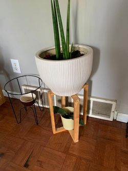 Plant holder for Sale in Dublin,  OH