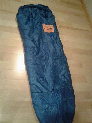 Authentic Adventure Gear sleeping bag from REI for Sale in Highland Park, IL