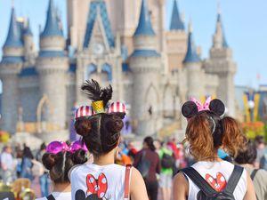 Walt Disney World One Day One Park Tickets for Sale in Bay Lake, FL