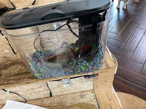 Used fish tank for Sale in March Air Reserve Base, CA