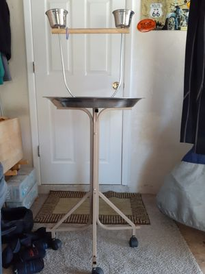 40 inch parrot stand for Sale in Tarpon Springs, FL