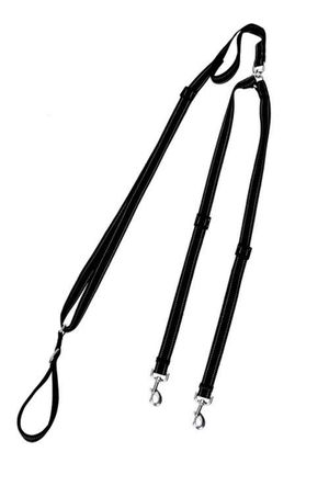 Double Dog Leash for Sale in Seattle, WA