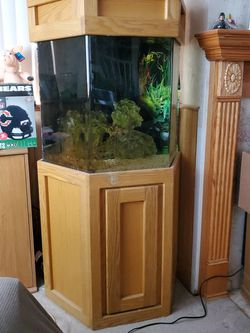 55 Gal Acrylic Fish Tank With Stand And Bio Ball Filtration. for Sale in Frankfort,  IL