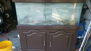 55gal fish tank with stand for Sale in Palm Bay, FL