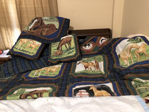 Horse blanket and pillows for Sale in Evansville, IN