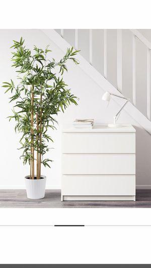 IKEA plant for Sale in Hesperia, CA