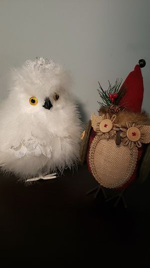 Owl decore 2pc EXCELLENT for Sale in Callahan, FL