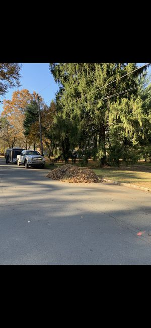 Fall leaf removal for Sale in Scotch Plains, NJ