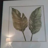 A set of two different Leaf Photographs framed in dark brown framework for Sale in Frederick, MD