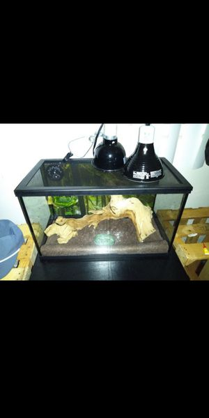 Tank comes with 2 heat lamps for Sale in Downey, CA