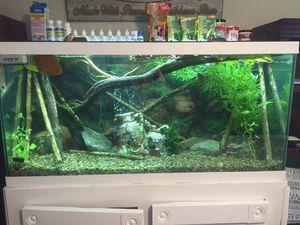 90 gallon fish tank .!!!! for Sale in Walton, KY