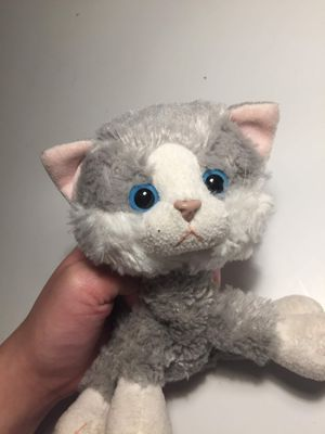 Adorable ❤️ grey haired kitty cat for Sale in San Leandro, CA