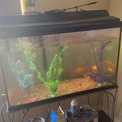 Fish Tank for Sale in Livingston,  CA