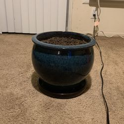"9"" Plant Pot for Larger Plants for Sale in San Diego,  CA"