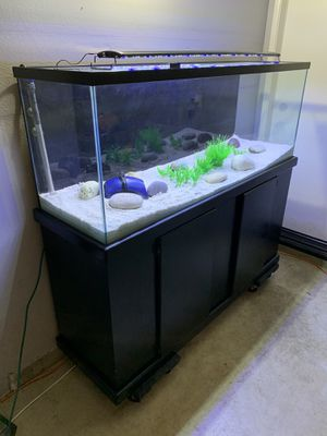 100 gallon fish tank, stand, led light, fx6 filter & more for Sale in Corona, CA