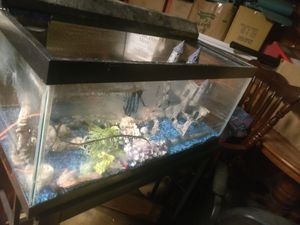 35 gallon fish tank with light filter assecories and stand for Sale in Piney, AR