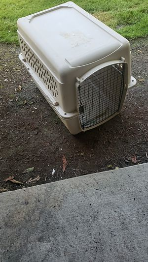 Pets for Sale in Tacoma, WA