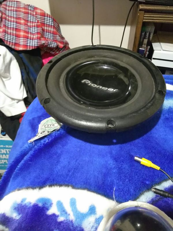 Ten inch pioneer sub