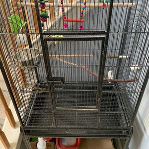 Zeny Bird Cage With Stand And Other Accessories for Sale in Franklin Township, NJ